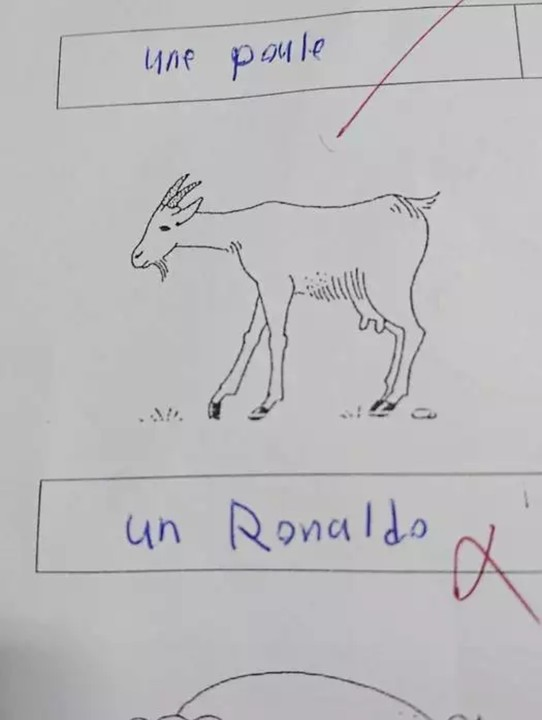 Student Fails French Exam After Naming Cristiano Ronaldo As The Goat