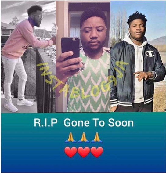 Three Nigerian Student Killed In Canada By Hit And Run Driver