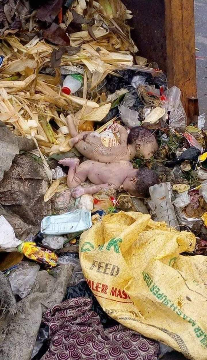 Shocking!! Dead Babies Found In Refuse Dump In Calabar (Graphic Photos)