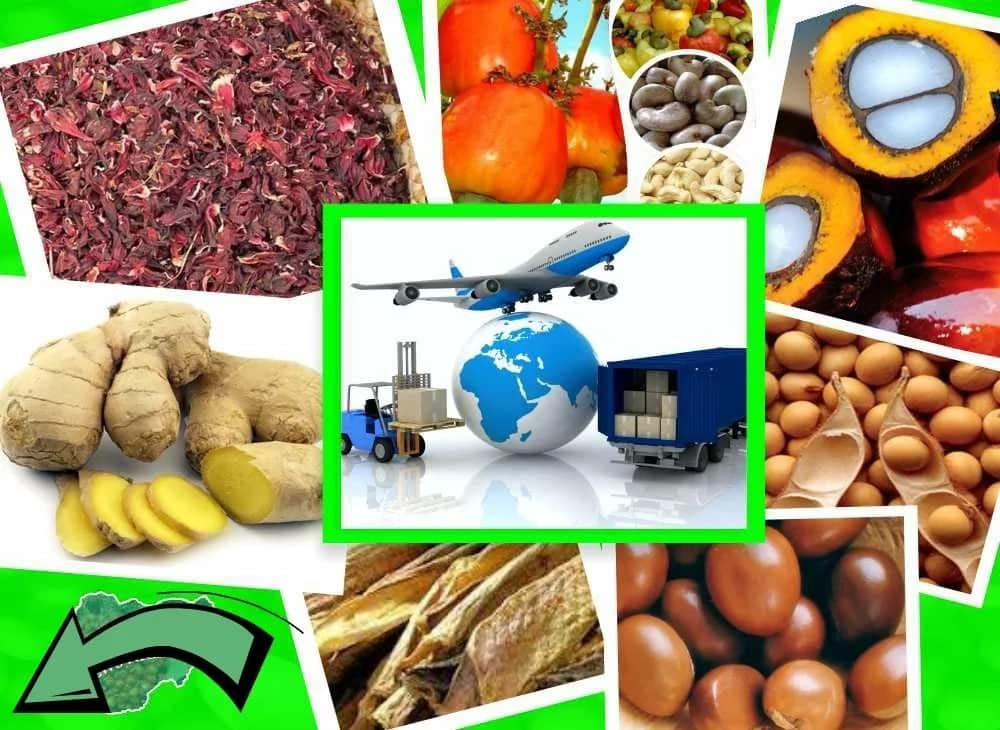 Discover The Secrets How You Can Be Exporting Agro Allied Products From  Home - Business - Nigeria