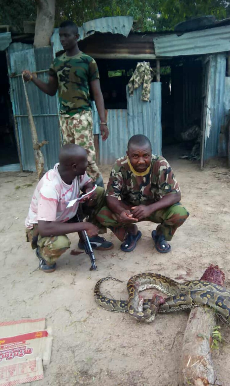 Huge Snake And Monitor Lizard Caught By Soldiers In Maiduguri (Photo) 2