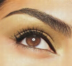 ladies this is how you get full and perfect eyebrows fashion