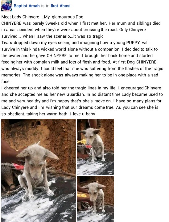 Man Shows Off His Pet Dog He named 'Lady Chinyere'