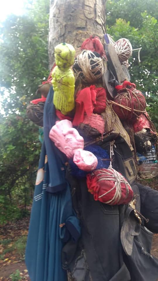 Youths Storm and burn Shrine With Panties, Pictures In Ohafia Forest in Abia (photos)