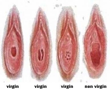 virgin pussy and non