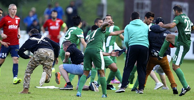 Pro-Palestinians Invade Football Pitch & Attack Israeli Footballers 1571767_3_jpg799bad5a3b514f096e69bbc4a7896cd9