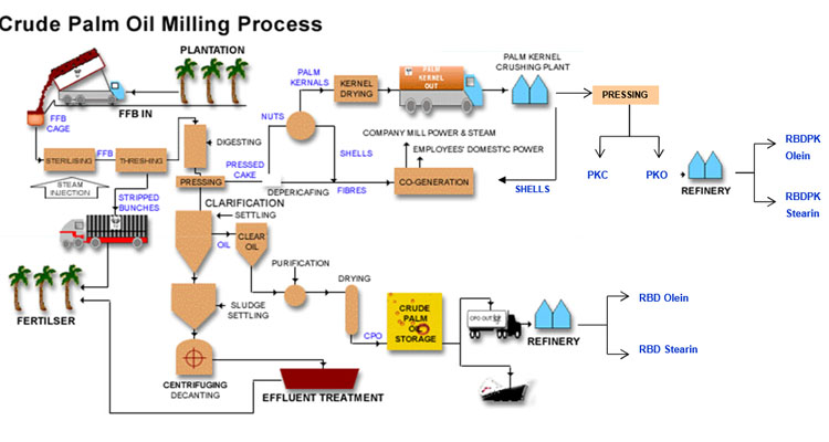 Palm Oil Machine Production And Palm Oil Mill For Sale In