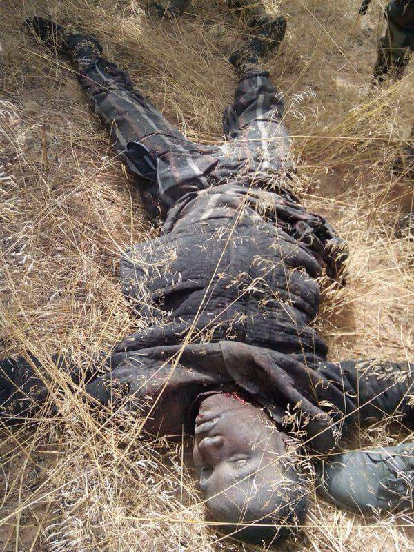 Graphic Photos Of 143 Boko Haram Fighters Killed By Cameroonian Army