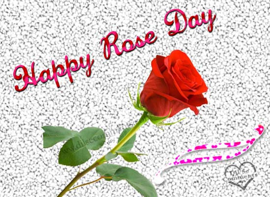 http://whatsappprofile.blogspot.in/2016/01/rose-day-sms-for-whatsapp-in-hindi-and.html