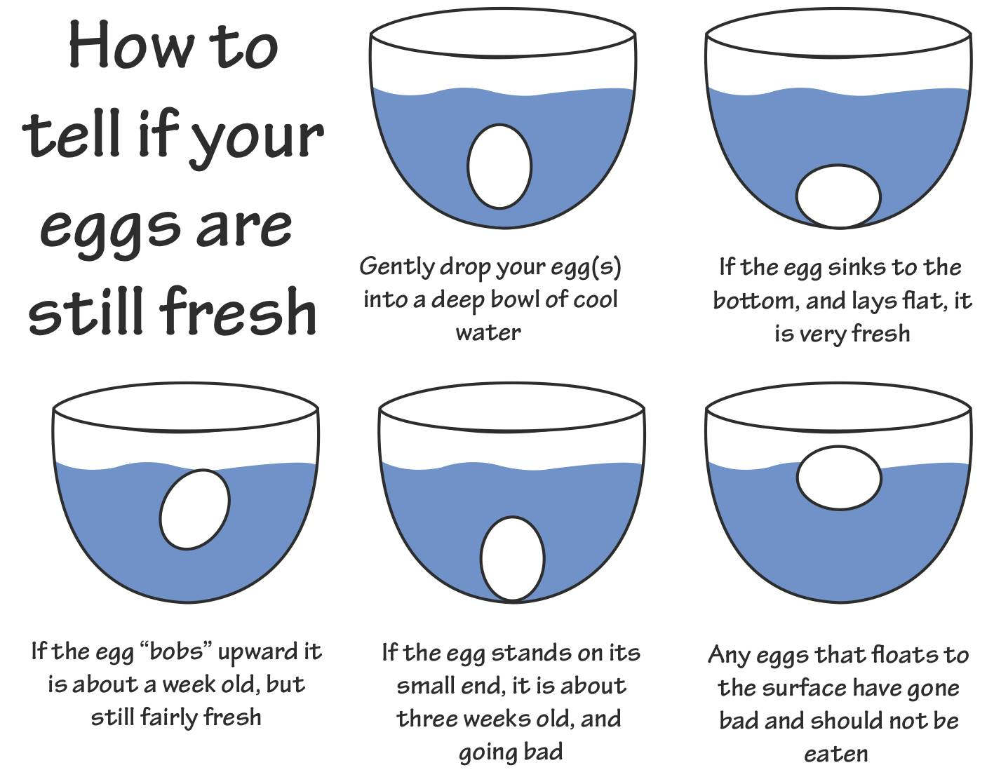 How To Tell If Your Eggs Are Still Fresh - Food - Nigeria