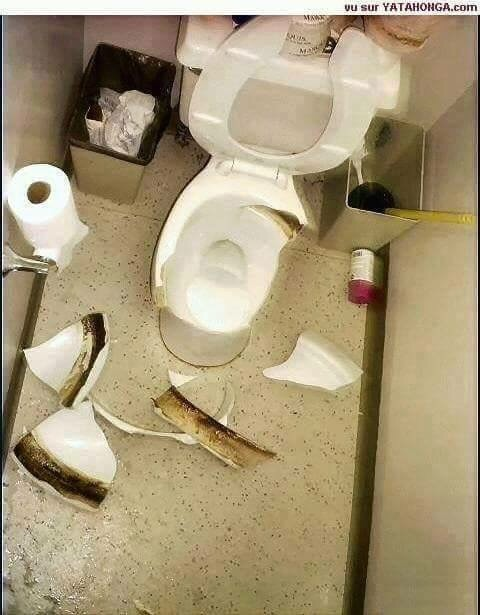 Fabulous Graphic Image Standing On The Toilet Bowl This May Happen Creativecarmelina Interior Chair Design Creativecarmelinacom