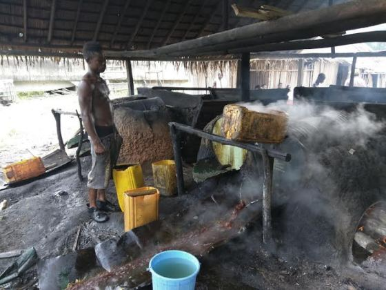 Photos Showing How Local Gin 'ogogoro' Is Brewed In Nigeria