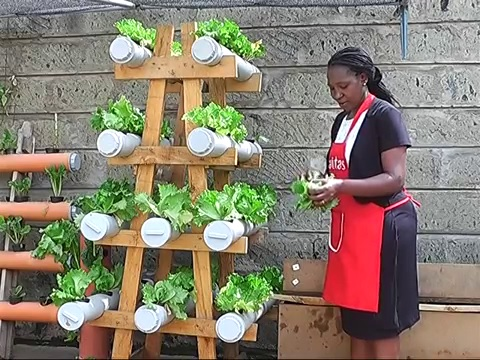 Small space urban farmers agriculture nigeria - Small space farming image ...