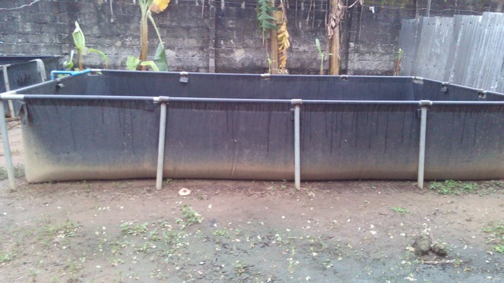 Mobile fish pond for sale adverts nigeria for Temporary koi pond