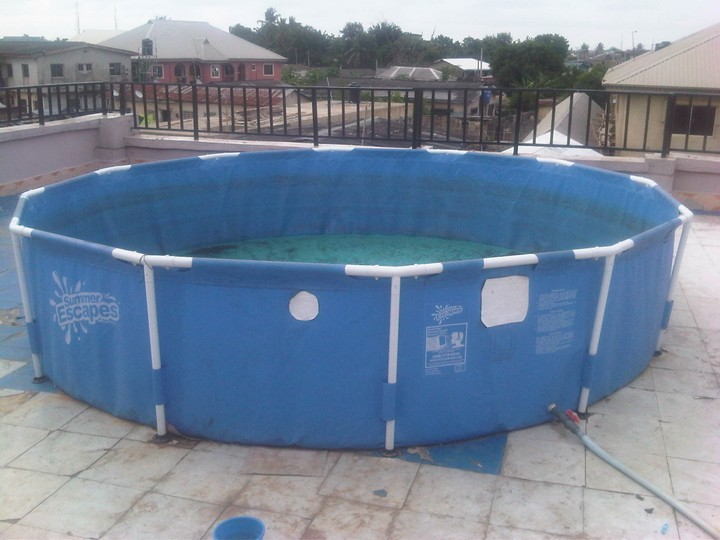 Swimming pool fish pond agriculture nigeria for Swimming pool koi pond conversion