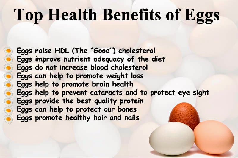 reloaded today is world egg day so check out benefits of