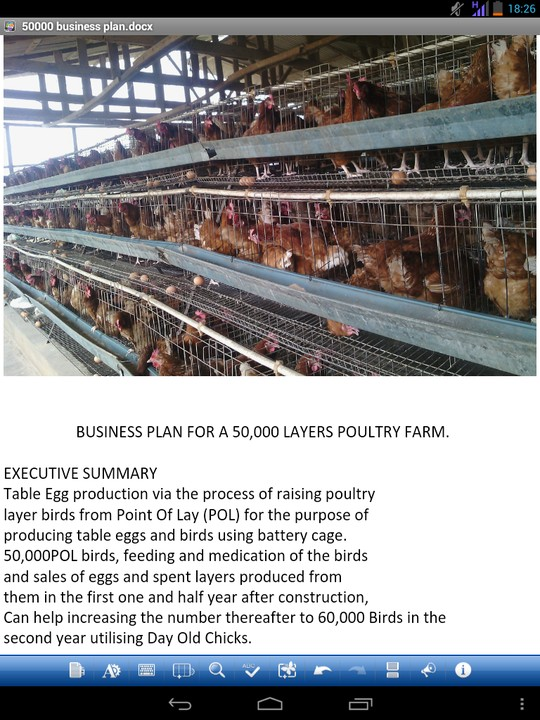 Business plan for egg production