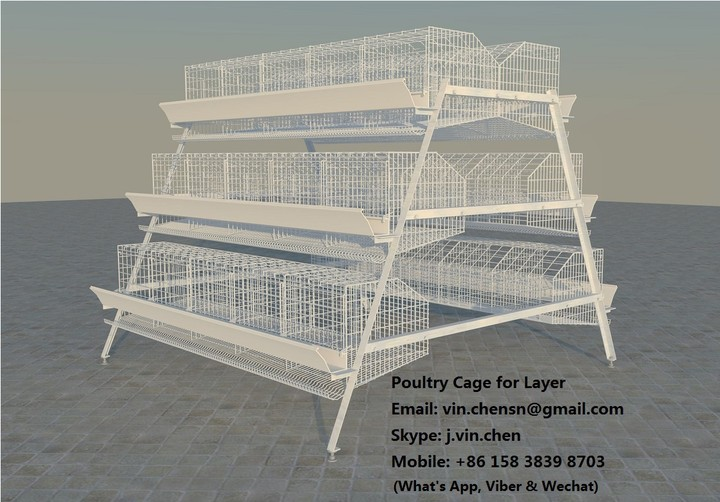 Poultry Farming Business Nigeria Feasibility / Business Plan