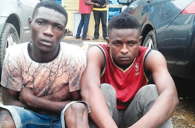 I Killed Our Rival To Avenge My Brother's Death — Cultist (Pictured)