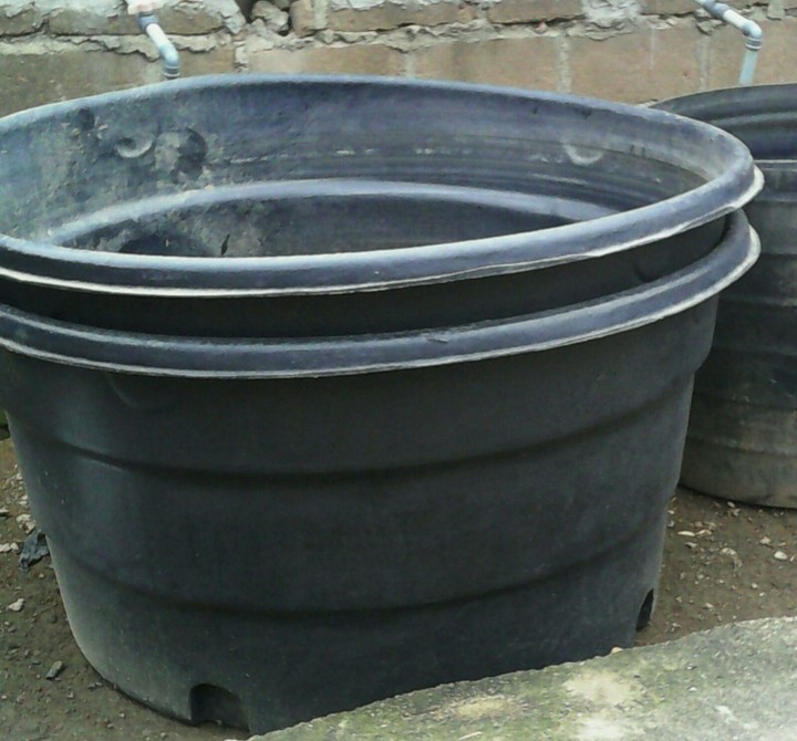 1500 Liters Plastic Fish Tank For Sale Agriculture Nigeria
