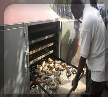 Nigerian Smoked Fish Market Potential - Agriculture - Nigeria