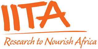 IITA Recruitment For Graduate Audit Trainees 3245600_iita_png06da2b2320e8011319ba151b4b308a36