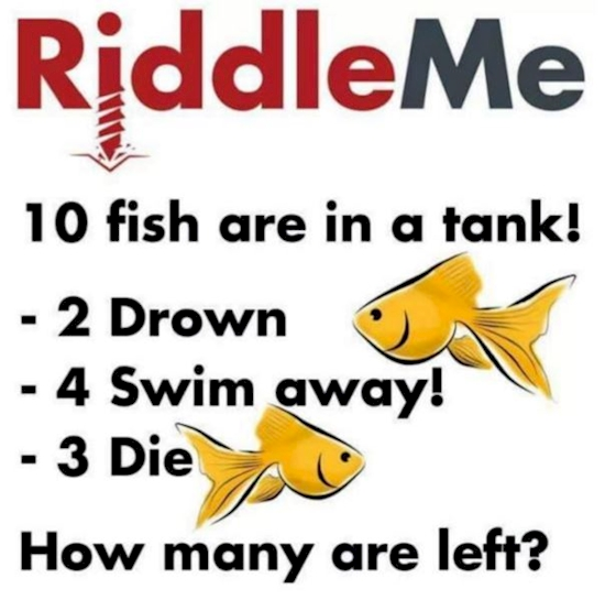 3291459_2688acb54cee4779bc2272dcab7ba123tablet_jpeg39c4beed34ec7e98a78aed2ae259802a fish riddle how many fish left? (see picture) forum games nigeria