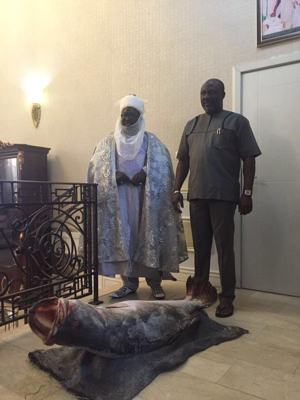 dino melaye and emir of ibi
