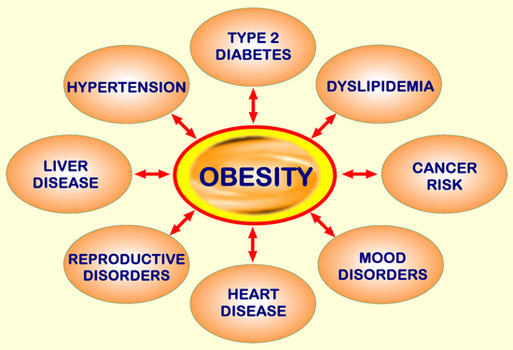 obesity problem Obesity is the most prevalent, fatal, chronic and relapsing disorder of the 21st century the rapid growth in obesity represents a major public concern although body weight tends to increase with age, the evolution of obesity over the lifecycle is not well understood this paper, based on secondary.