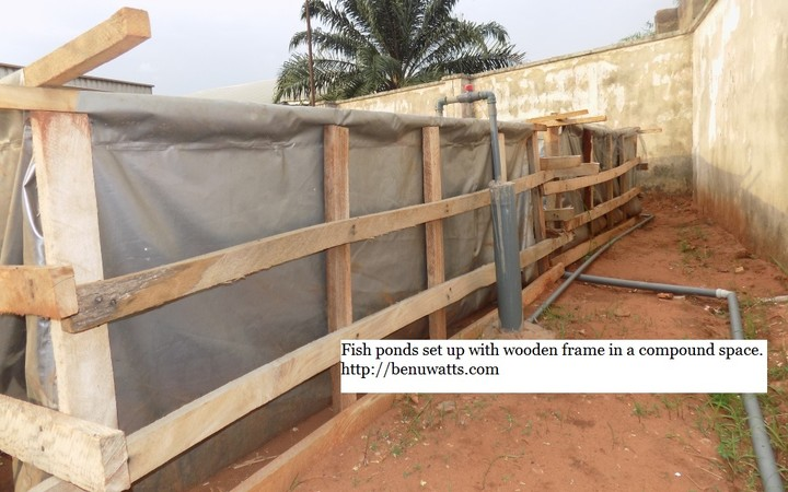Easy way to start modern fish farming using reinforced for Tarpaulin fish pond