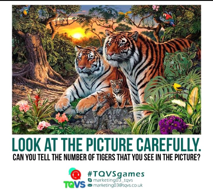 CRACK YOUR BRAIN: How Many Tigers Can You See In This Picture?
