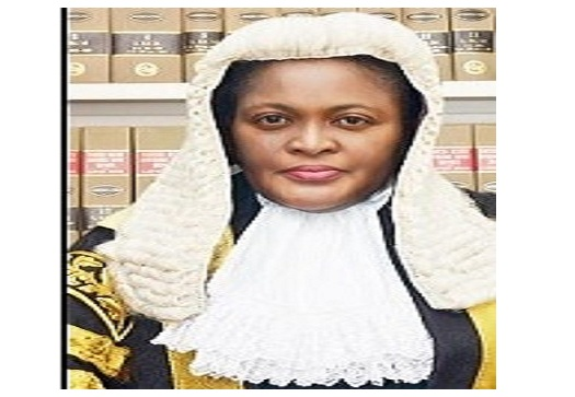Image result for justice mary odili