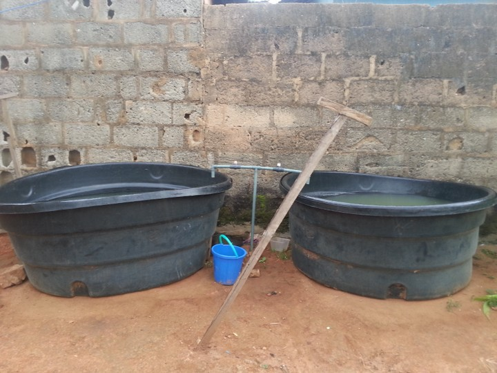 1500 liters hart plastic fish pond urgently for sale for Pond fish for sale near me