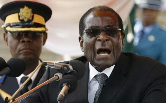 """""""We Wasted Money On These Rats"""" – Mugabe Calls For Arrest Of Zimbabwean Olympic Team"""