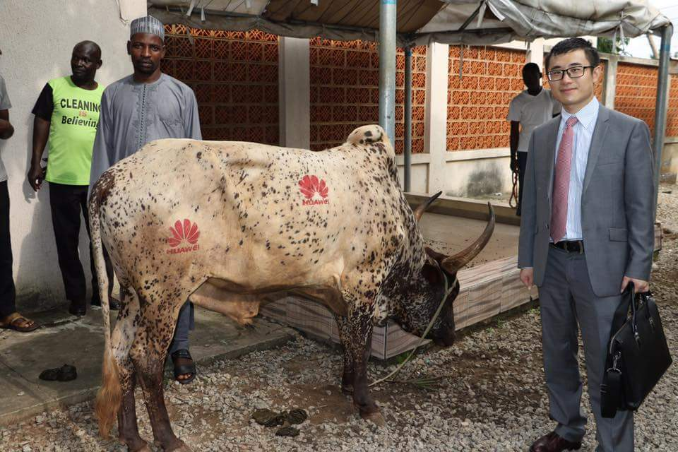 Chinese Company, Huawei, Donates Cow Crested With Its Logo To Abuja Mosque (Pics)