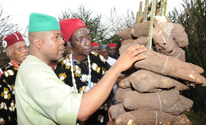 Tension In South East As MASSOB Vows To Stop Ofala, New Yam Festivals