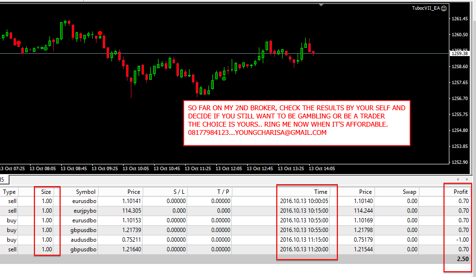 Binary options vps