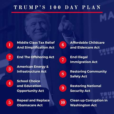 Image result for Trump's 100 days