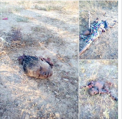 Female Suicide Bombers Killed By Soldiers In Borno This Morning (Graphic Photos)
