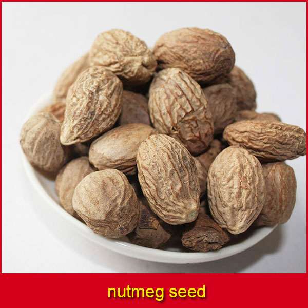 Bitter Kola Nuts And Nutmeg seeds for Supply  - Agriculture