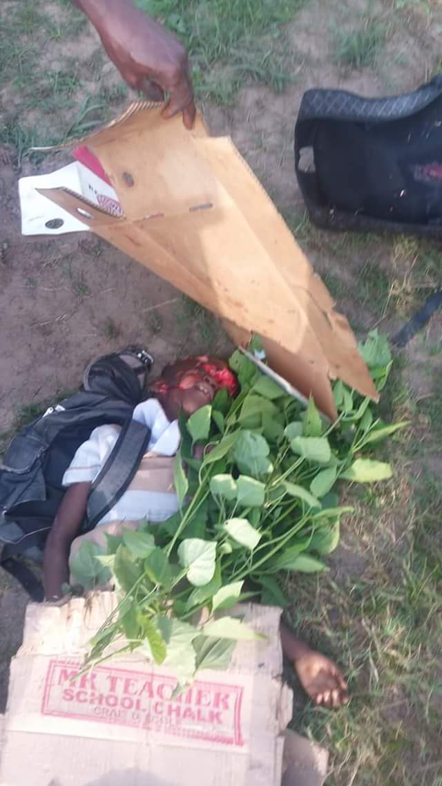 Tipper Crushes Young Girl Going To School In Delta This Morning (Graphic Pics)