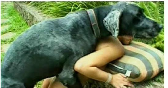 Image result for A LADY CAUGHT HAVING S$X WITH A DOG