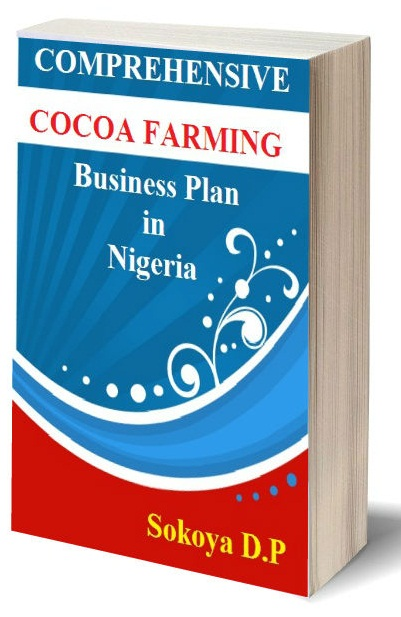 Palm Oil Business Plan in Nigeria – Start Palm Oil Business