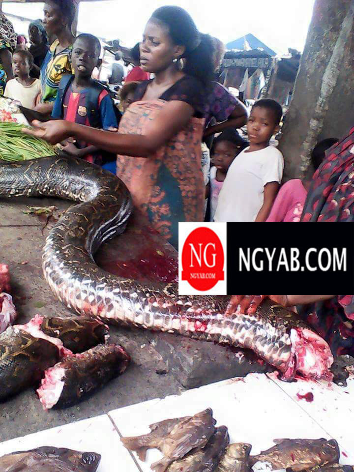 A Market In Nigeria Where Pythons Are Butchered & Sold As Meat (photo) - Food