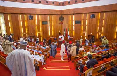 Petitions Flood Senate Over Auditor General Of The Federation Nominee