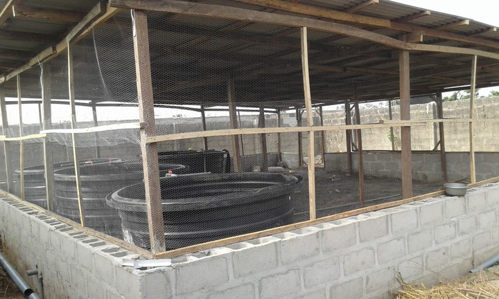 7 units of hart 4000 litres plastic for fish pond for sale for Plastic fish ponds