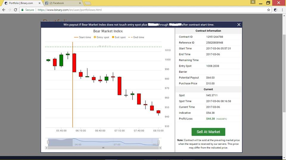 $100 a day binary options