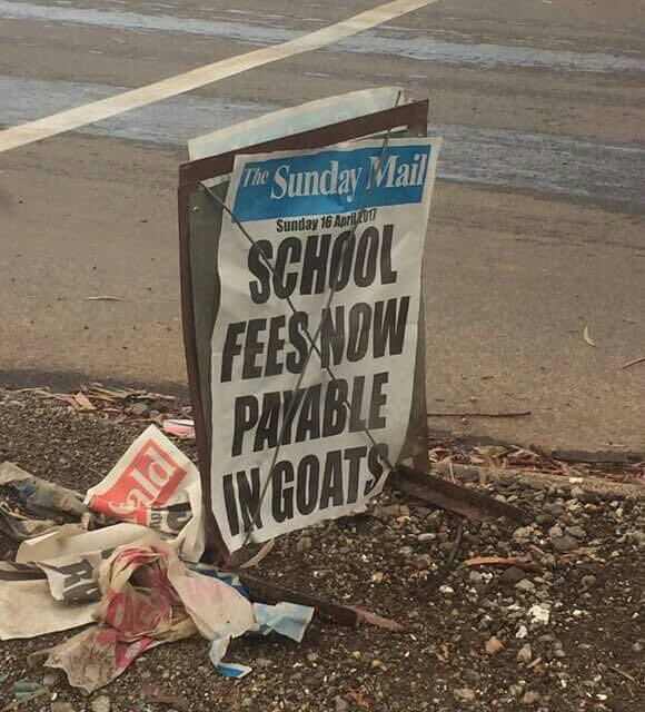 See Country Where Goat Can Be USed To Pay School Fees