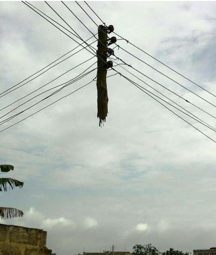 Hey!! Instead Of Poles To Hold Cables, Cables Are Now Holding Poles ...