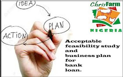 how to write a market feasibility How to do a feasibility study write a market analysis how to write a management plan how to write a business plan for a.